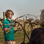 Pershore Patty Meets Chris Haywood – Sales & Marketing Manager / Wine Maker at Astley Vineyard